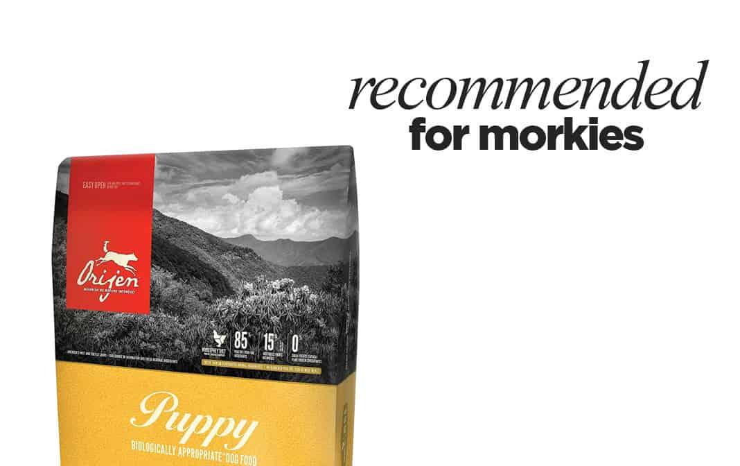 Skin Problems With Orijen Dog Food