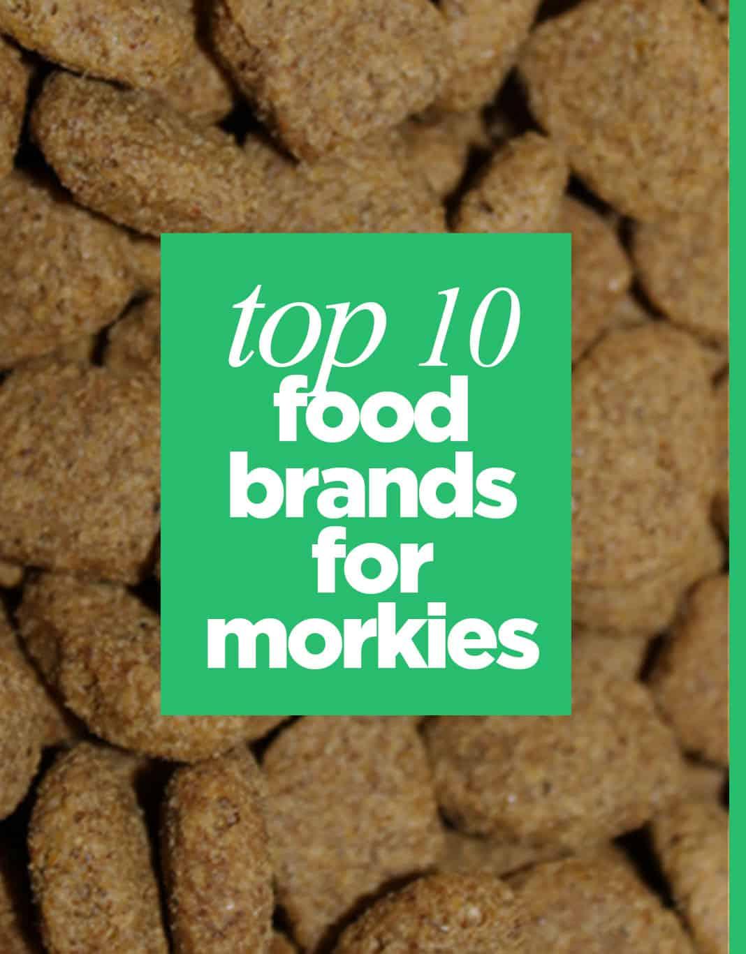 Orijen Dog Food Reviews >> Top 10 Best Food Brands For Morkie Dogs - The Morkie Guide
